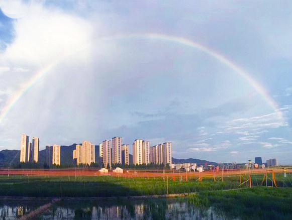 哪里有彩虹告诉我 把我的愿望带给我